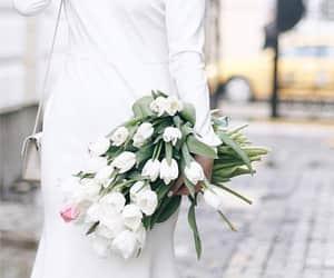 flower, ًورد, and white image