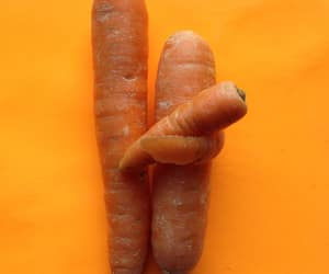 carrots, family, and minimalism image