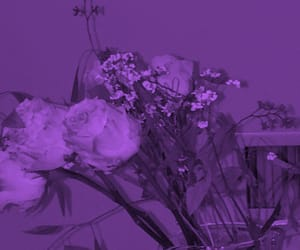 aesthetic, cool, and purple image