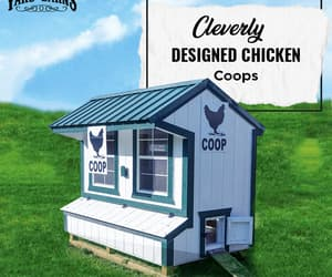 chicken coops and portable hen house image