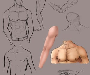 drawing, male body, and references image