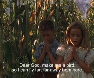 bird, quotes, and forrest gump image