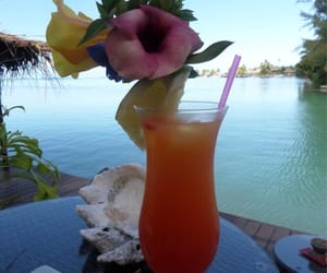 cocktail, shell, and flowers image
