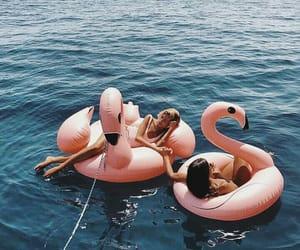 blue, flamingos, and holidays image