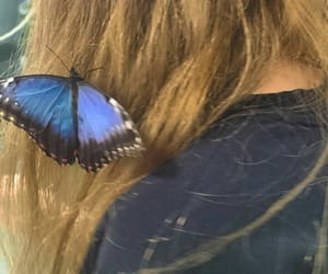 aesthetic, butterfly, and girl image