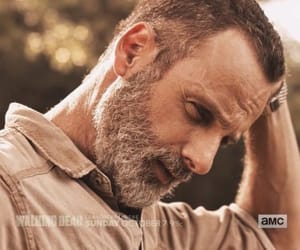 series, tv, and the walking dead image
