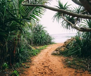 beach, nature, and travel image