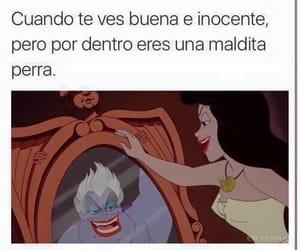 meme, bitch, and memes en español image