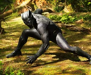 black panther, Marvel, and chadwick boseman image
