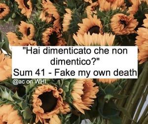 frasi, sum 41, and citazioni image