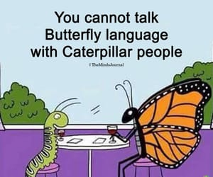 butterfly, caterpillar, and language image