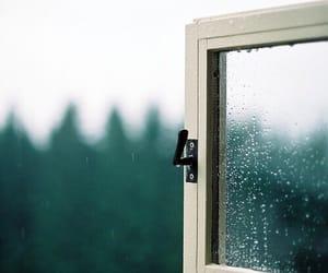 drops, nature, and rain image