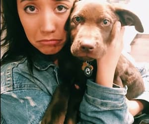dog, girl, and singer image