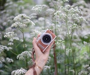 camara, camera, and flowers image