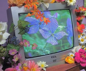 flowers, aesthetic, and tv image