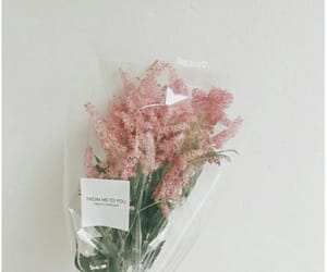 aesthetic, bouquet, and pink image