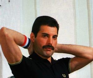 1980s, Freddie Mercury, and handsome image