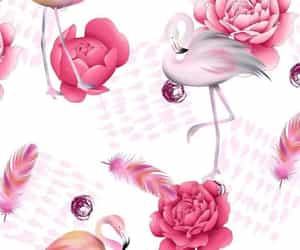 wallpaper and flamingo image