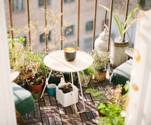 balcony, plants, and summer image