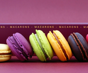 macarons, macaroons, and food image