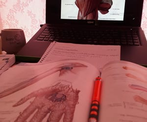 anatomy, notes, and study table image