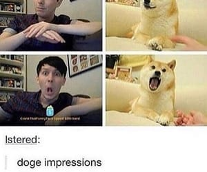 funny, danhowell, and danandphil image