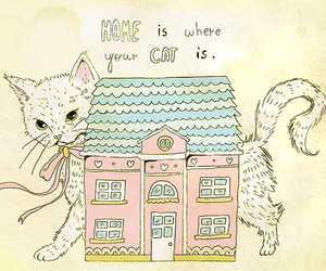 cat, home, and cute image