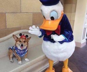 disney, micky, and mascotas image