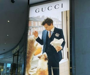 gucci, Logo, and Harry Styles image