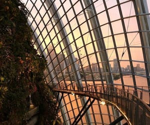 dome, singapore, and gardens by the bay image