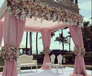 pink, flowers, and wedding image
