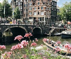 amsterdam, summer, and wanderlust image
