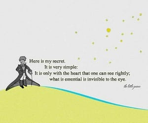 quotes, little prince, and book image