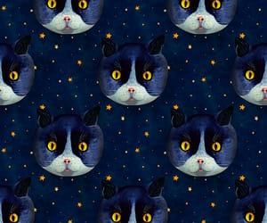 cat, pattern, and stars image