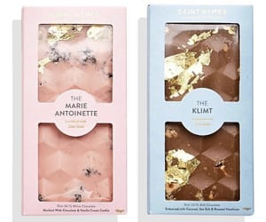 chocolate, raspberry chocolate, and the marie antoinette image