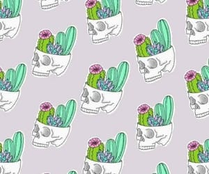 wallpaper, cactus, and fondos image