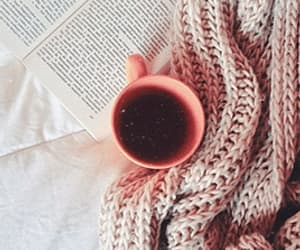 aesthetic, autumn, and bookworm image