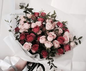 tumblr inspiration, flowers roses plants, and nature aesthetic image