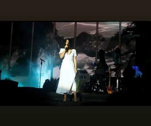 concert, lana, and lana del ray image