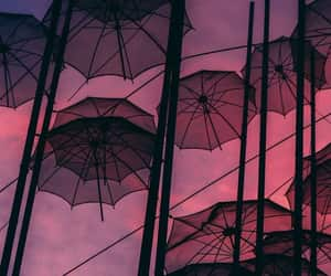 umbrella, wallpaper, and background image