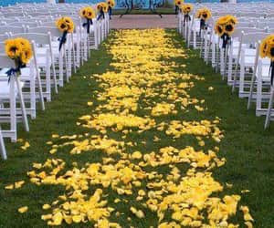 casamento, wedding, and beach image