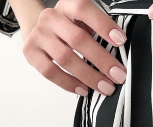 delicate, fashion, and nails image