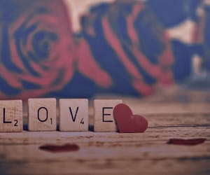 rose, love, and scrabble image