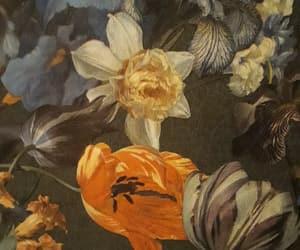 blumen, flowers, and tulpe image