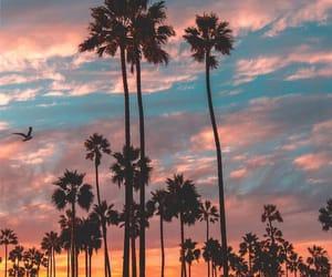 amazing, sunset, and travel image