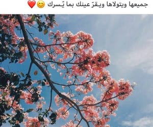 راقت لي, جُمال, and الله image