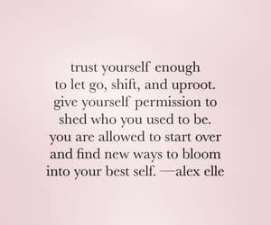 SHIFT, starting over, and give yourself permission image
