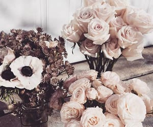 flowers, rose, and love cute style image