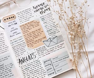 notebook, design, and notes image