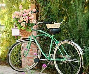 bike, green, and retro image